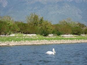 Rupite,R.manastir,Melnik, Kerkini 20,21,22.09.2013 170